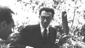 برترین نویسنده ایران