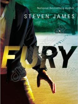 Fury - Blur Trilogy